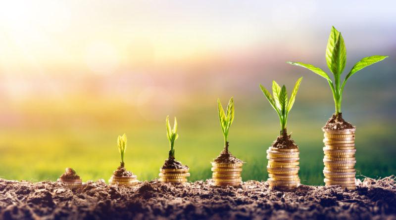 Start-Ups Investieren